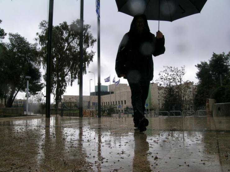 Regen in januari. Foto: © Alfred Muller