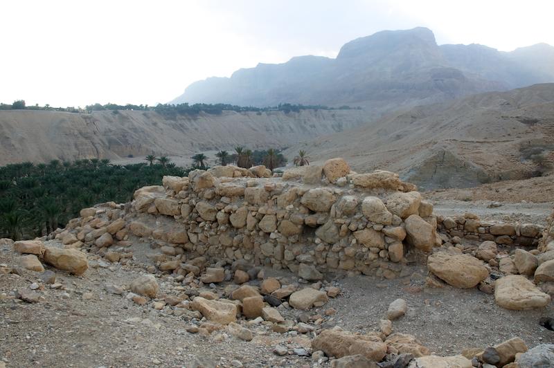 ALMU20110106_1238 Engedi wadi Arugot