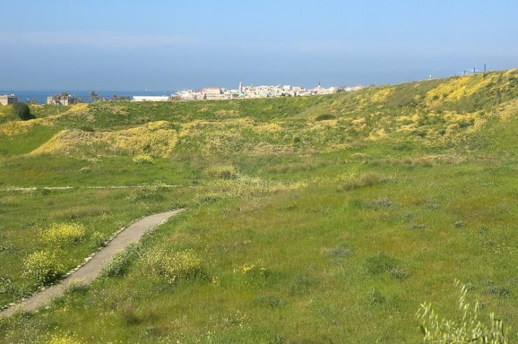 Op Tel Akko, ook wel  Ptolemais genoemd, met de Oude Stad van het huidige Akko op de achtergrod. Foto: Alfred Muller