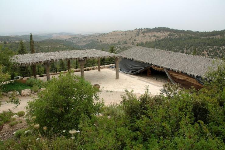 In de Bijbelse tuin van Yad Hashmona. Foto's: © Alfred Muller