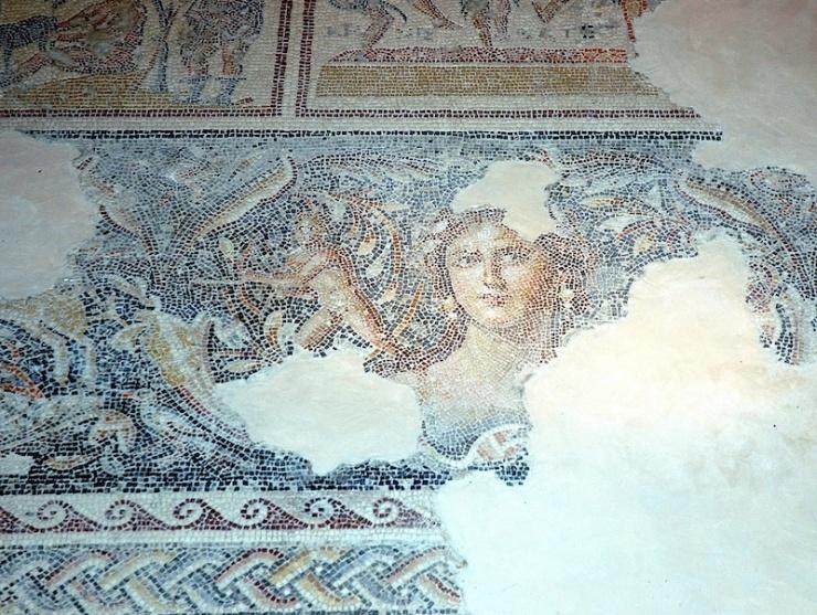 Een mozaîek in Zippora. Het kunstwerk wordt wel 'de Mona Lisa van Galilea' genoemd. Foto: © Alfred Muller