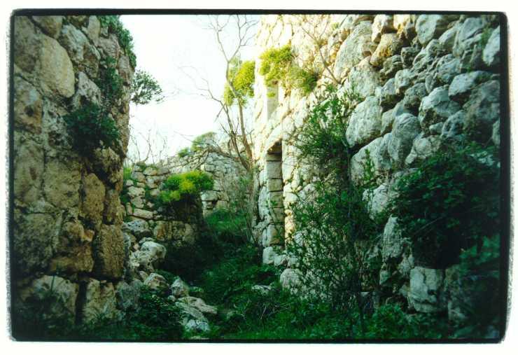 Overblijfselen van het Arabische dorp Suba ten westen van Jeruzalem die in de oorlog van 1948 werd verlaten. Foto: © Alfred Muller