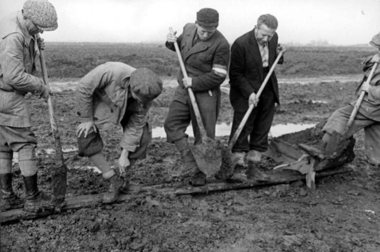 Duizenden Hongaren werden gedwongen slavenwerk te doen. Tachtig procent van hen overleefde dat niet. Foto:  Yad Vashem