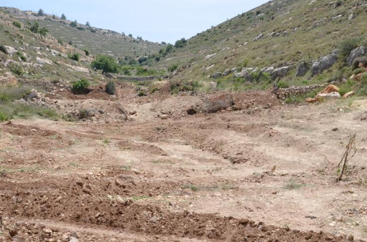 Het verwoeste veld bij de boerderij van de Nassar familie. Foto: Tent of Nations.