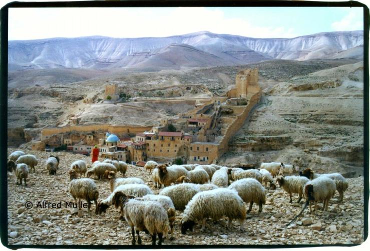 Het Mar Saba klooster in de Judese woestijn. Foto: © Alfred Muller.