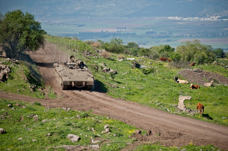 IDF Exercise Golan