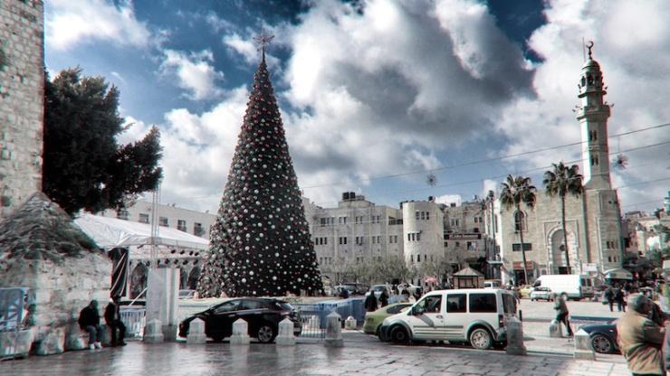 de kerstboom op het Kribbeplein. Foto: © Alfred Muller