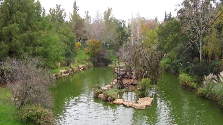 In de bijbelse dierentuin.