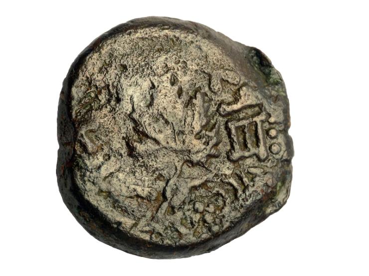 Een munt uit de tijd van de grote opstand tegen de Romeinen (66-70 na Chr.), die is gevonden in het puin boven de straat uit de Tweede Tempelperiode. Foto: Carla Amit, Israëlische Oudheidkundige Dienst.