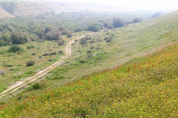 02914 route door Besor Vallei