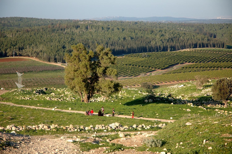ALMU20100127_9527 Tel Tsafit bedoeïenen