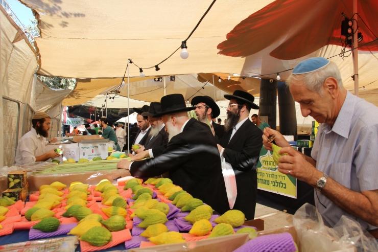 Løvhyttefest 2017 lulav-markedet 2 (H. Norberg)
