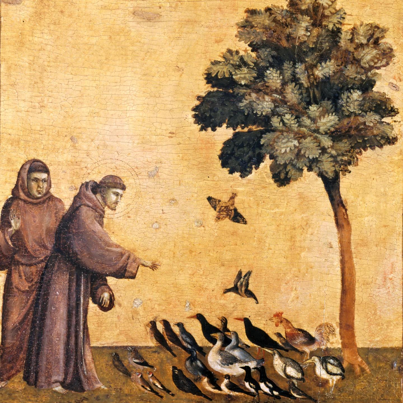 Citaten Franciscus Van Assisi : Franciscus van assisi in het heilige land alfred muller