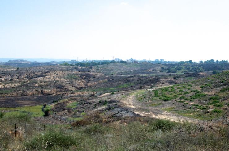 Verbrand natuurgebied tussen kibboets Nir Am en de Gazastrook.
