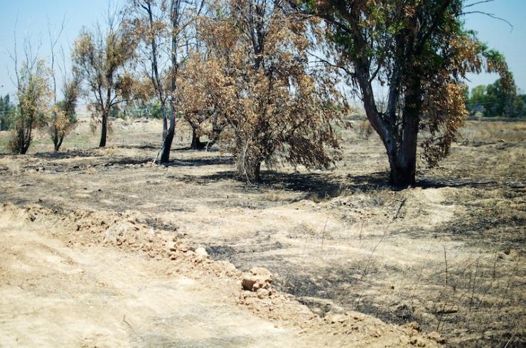 Verbrand gebied bij kibboets Nahal Oz.