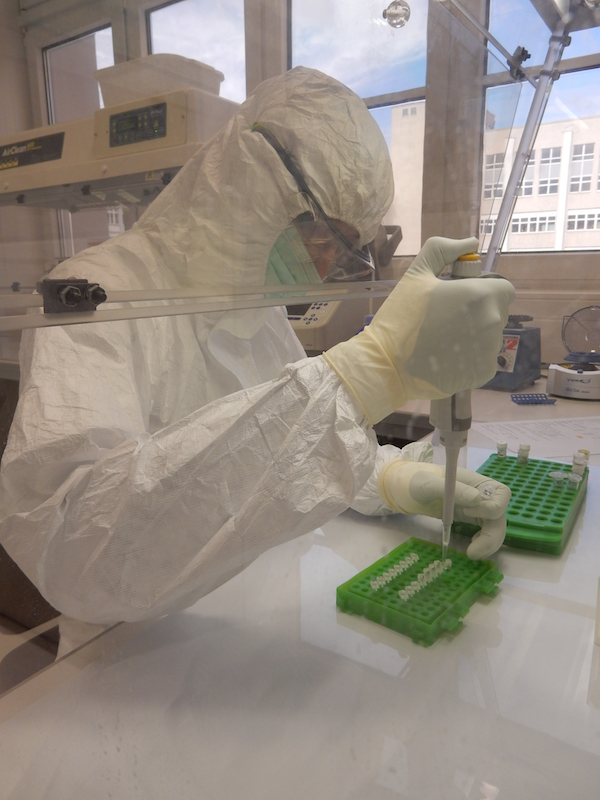 Processing_Ancient_DNA_in_Clean_Room_Lab_c_Brandt_Guido