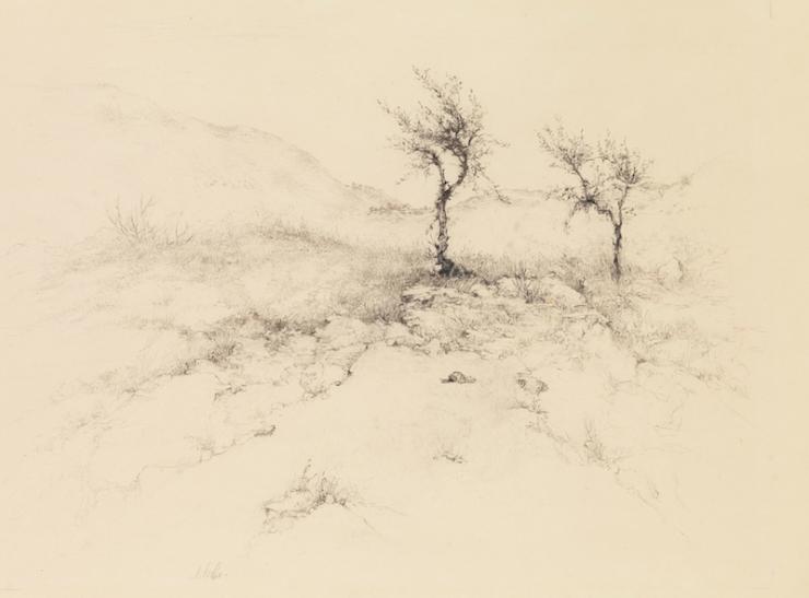Ticho Anna, Spring in Motza,1938~B80_0313