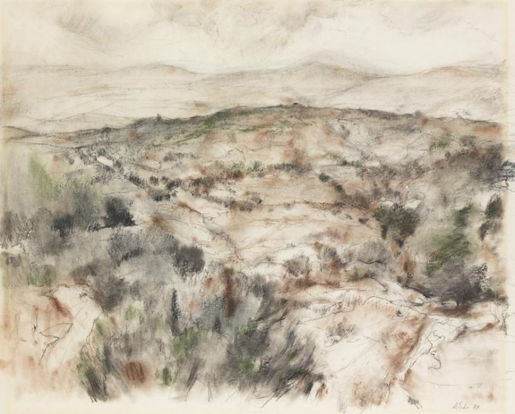 Ticho Anna, Summer Landscape, 1978~B08_489